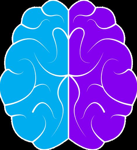 BluePurpleBrain
