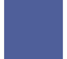 Nexus_Lifecycle_Logo.png