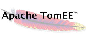 Apache TomEE - x 300.png