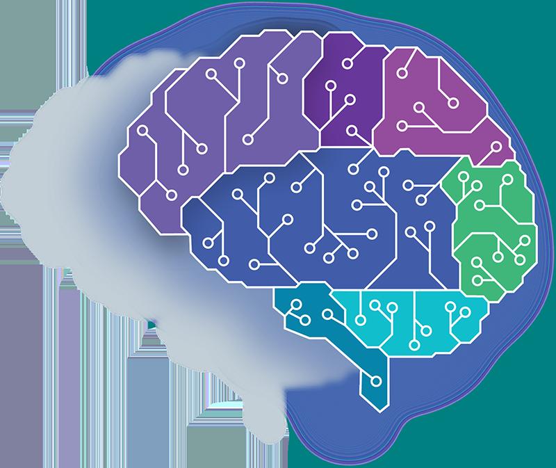 SON_NexusIntellignece_full_brain.png